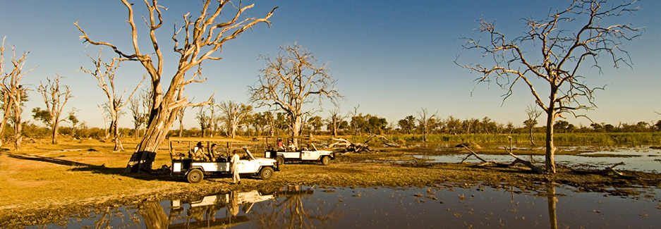 Moremi Game Reserve | Botswana Luxury Safaris | Luxury Africa Safari | Ker Downey
