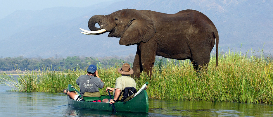 Zimbabwe Luxury Safaris | Luxury Africa Safari | Ker Downey