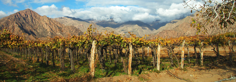 Salta | Luxury Argentina Travel | Ker Downey
