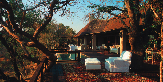 Liz Biden | Royal Malewane | South Africa Safari | Luxury Safari Africa | Ker Downey