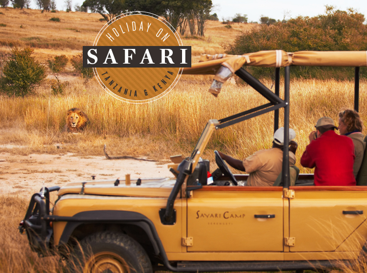 Holiday on Safari