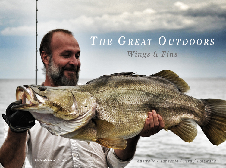 The Great Outdoors: Wings and Fins
