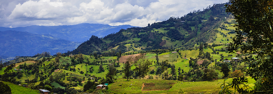 Pacific Coast - Luxury Travel Colombia - Ker Downey