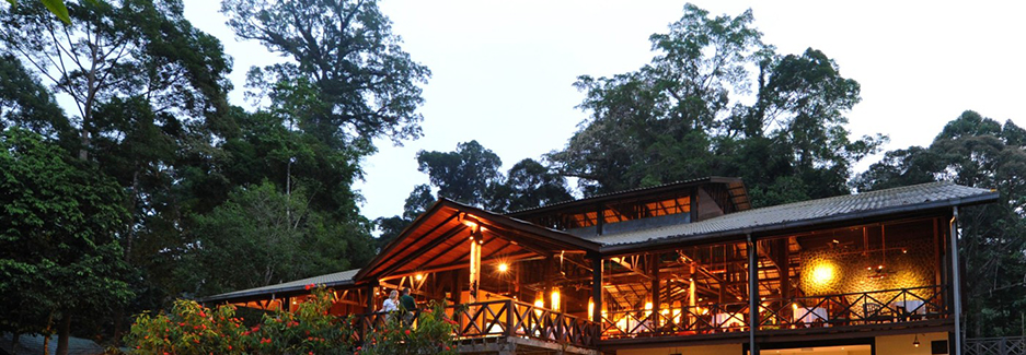 Borneo Rainforest Lodge | Malaysia Luxury Travel | Ker Downey