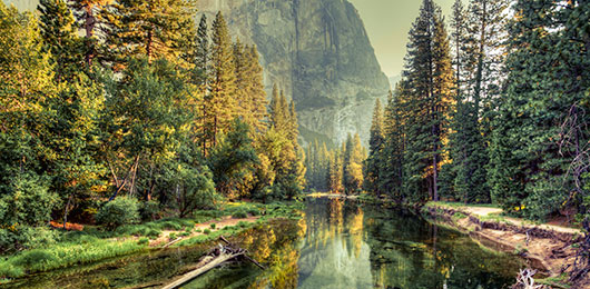 Majestic Masterpieces:  America's National Parks in Style
