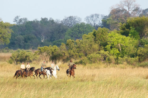Okavango Horse Safari Guides: PJ, Barney, Thabo, and Rodgers