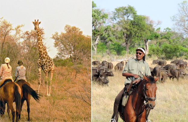 Okavango Horse Safari | Luxury Horseback Riding Safari | Luxury Africa Safari | Ker Downey