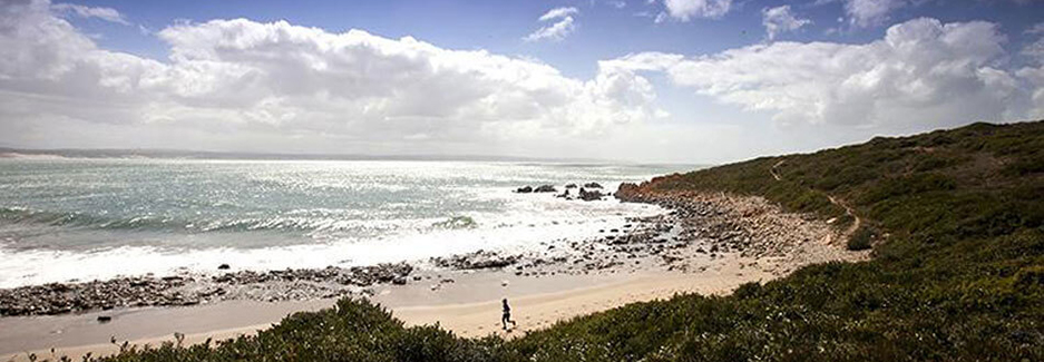Oystercatcher Trail | South Africa Walking Safari | Garden Route