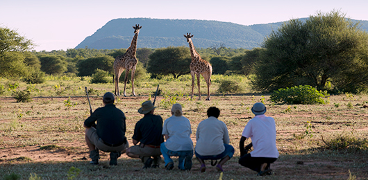 The South Africa Walking Safari by Ker & Downey
