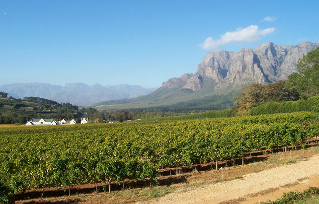 Luxury South African Getaway | Cape Town Winelands | Ker Downey