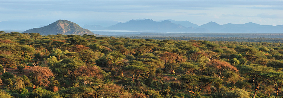 Samburu National Reserve | Buffalo Springs | Shaba