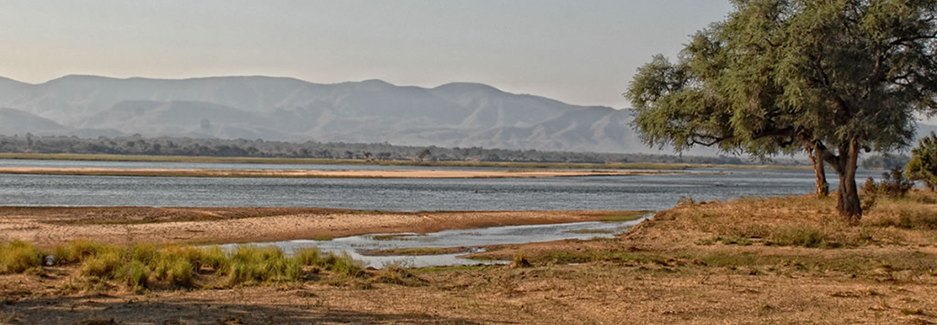 Zambezi Life Styles | Mana Pools | Zimbabwe Safari