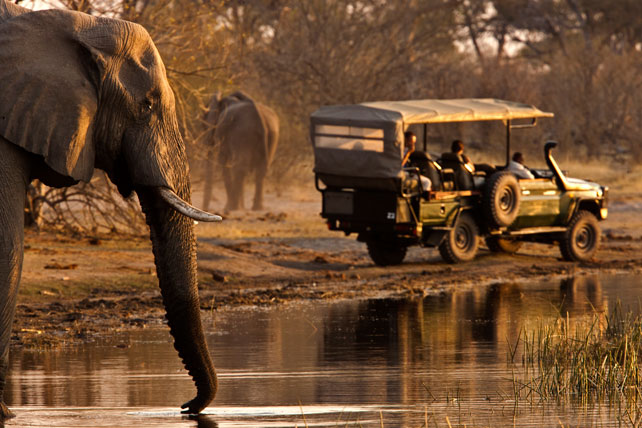 Best Safari in Africa | Luxury Botswana Safaris | Zarafa Camp | Ker Downey