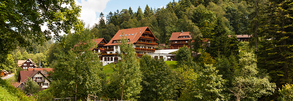 Black Forest and Southwest Germany | Luxury Black Forest, Price of travel to Western Europe