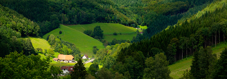 Black Forest and Southwest Germany | Luxury Black Forest