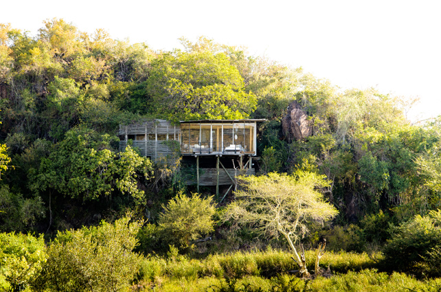 Safari and Beach Journeys | Luxury South Africa Safari | Ker Downey