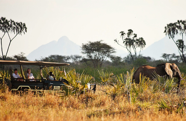 Kenya Fly-In Safari - Kenya Luxury Safari - Ker Downey