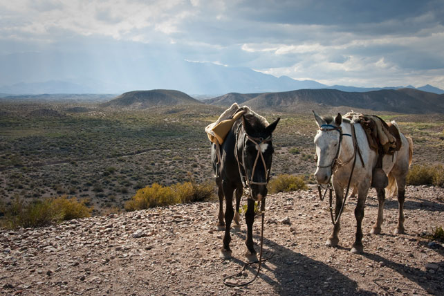 Where to travel in December - Luxury Argentina Travel - Ker Downey