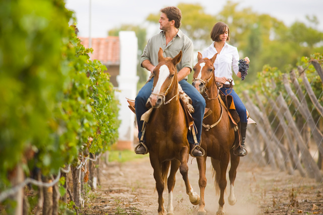 Latin American Wineries - Luxury Argentina Travel - Grace Cafayate - Ker Downey