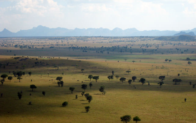 Kidepo Valley National Park - Luxury Uganda Safari - Ker Downey