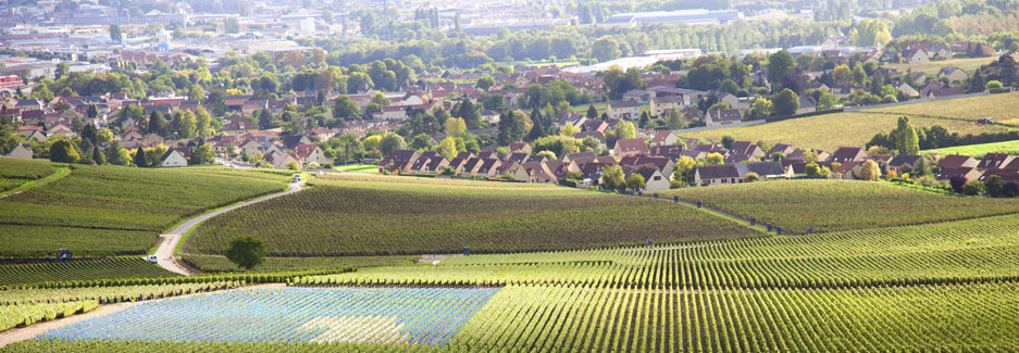 Burgundy - Luxury Travel to France and Europe with Ker & Downey