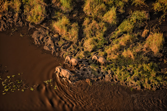 Luxury Helicopter Tours - Luxury Botswana Safari - Linyanti Bush Camp - Ker Downey