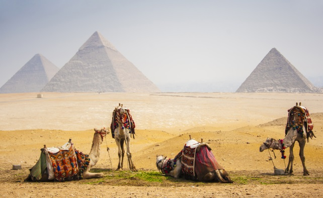 From Egypt to India - Around the World in 80 Days Travel - Ker & Downey