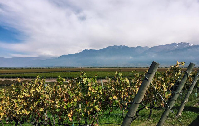 Top Things to do in Mendoza - Luxury Argentina Travel - Ker Downey