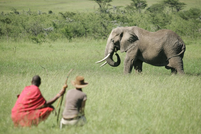 Eco-Friendly Travel to Kenya
