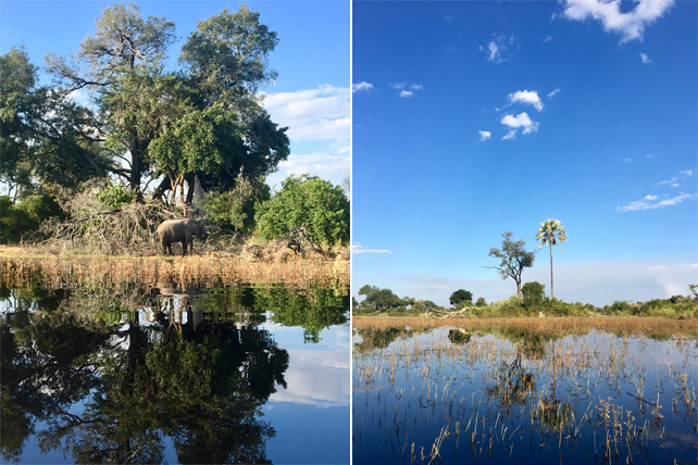 Responsible Tourism in Botswana - Luxury Travel - Philanthropy Travel - Ker Downey