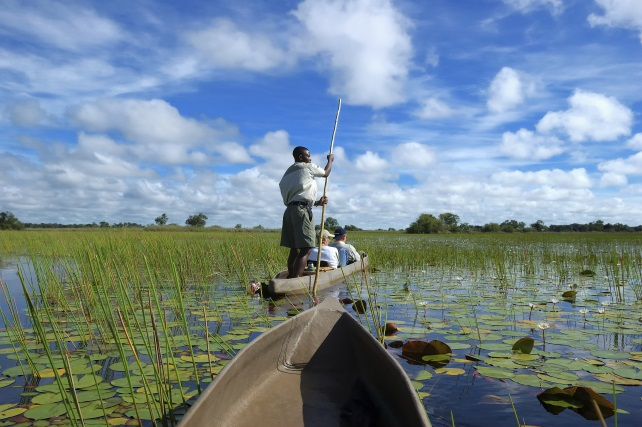 Go-Into The Okavango-ker-downey-canoe