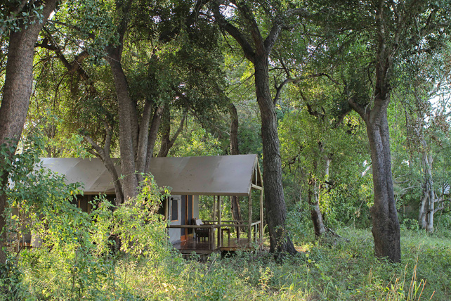 Safari in the Okavango Delta - Luxury Botswana Safari-Ker Downey