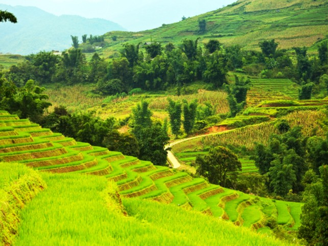 Family Trip to Southeast Asia - Custom Family Travel - Ker & Downey-Vietnam-Travel-Countryside