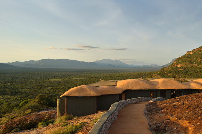 Samburu - The Lion King - Luxury African Safaris - Ker & Downey