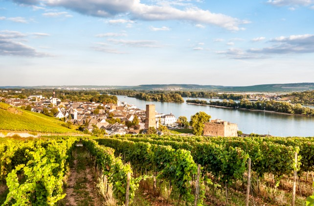 Luxury Rhine-Custom Germany River Cruise-Ker & Downey-Rüdesheim