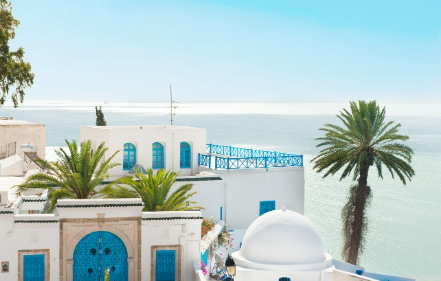 The Bluest Places on Earth - Tunisia Travel - Ker & Downey