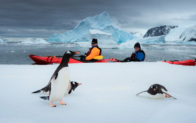Luxury-Travel-to-Antarctica-on-a-Ker-Downey-Fly-Cruise-Adventure