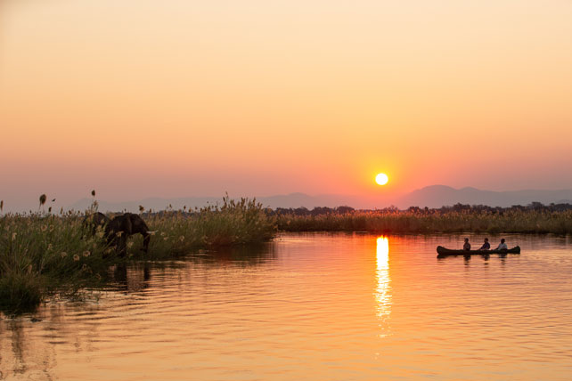 Where to go on safari to avoid the crowds - zimbabwe - ker downey