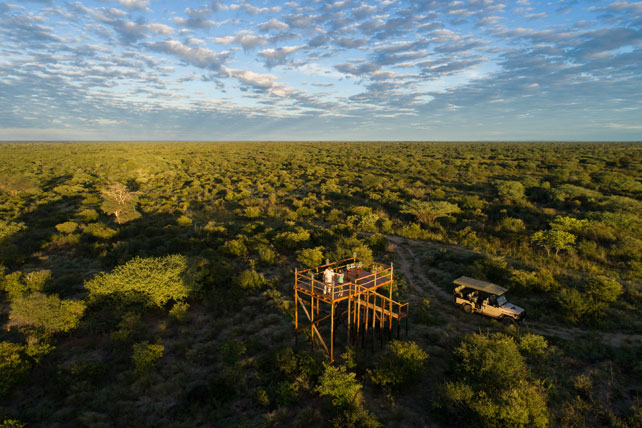 Where to go on safari to avoid the crowds - botswana