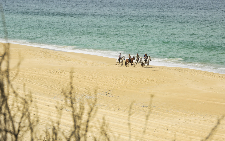 Portugal-Horseback-Riding-Horse-Riding-Private-Tour-Ker-Downey