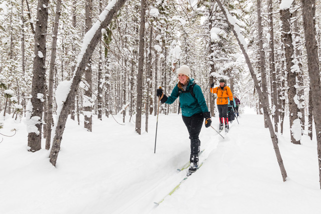 Yellowstone Snowshoeing - united states vacation