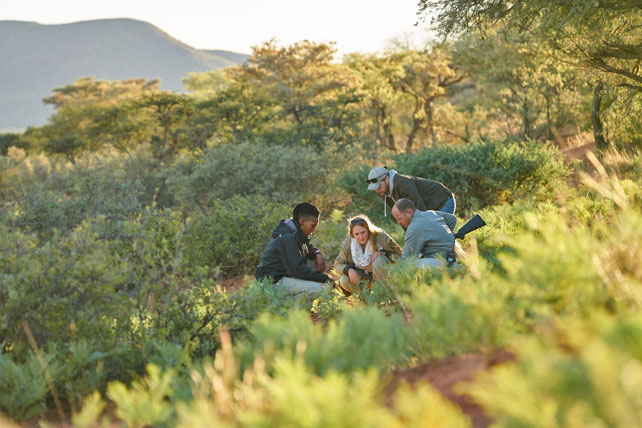 Planning a Graduation? Celebrate Your Grad with a Safari