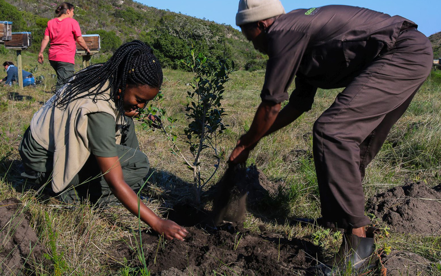 Grootbos-Foundation-Green-Futures-with-Ker-&-Downey-Philanthropy